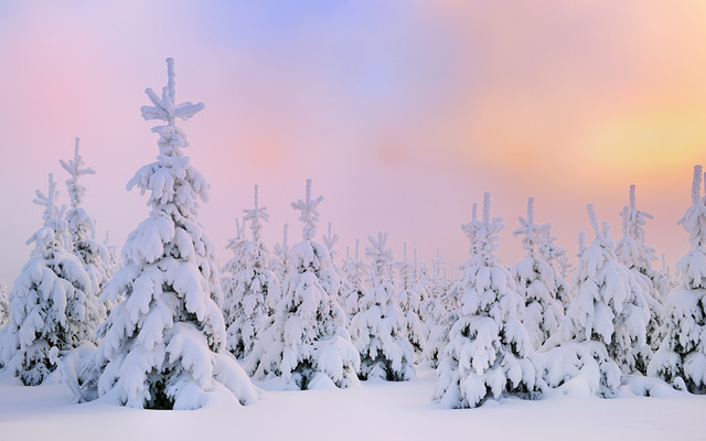 微软Windows10壁纸-自然壁纸-Microsoft Windows Wallpaper Nature-Winter